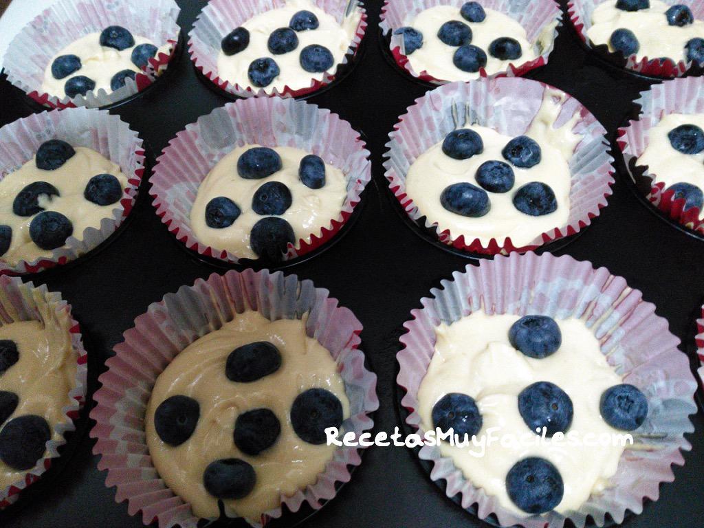 foto muffins de arándanos