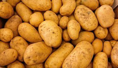 Fotos Variedades de patatas para cocinar