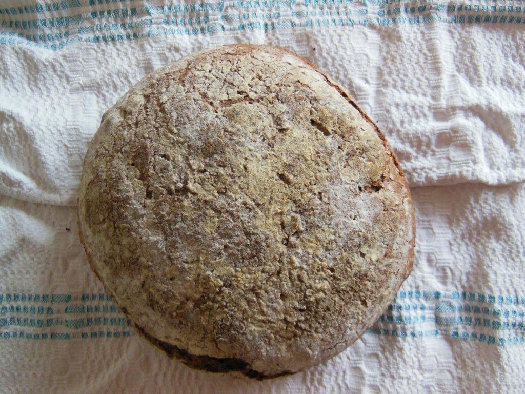 pan masa madre antes de secar